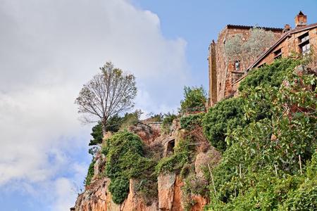 Civita di Bagnoregio, Viterbo, Lazio, Italy: the rock face of the tuff hill where it was built the medieval village with a tree on the precipice