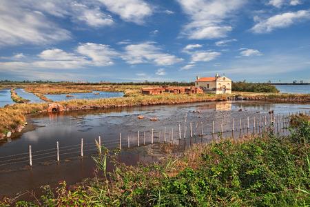 Po Delta Park landscape in Porto Tolle, Rovigo, Veneto, Italy. Picturesque view of the swamp in the nature reserve of the Po river mouth