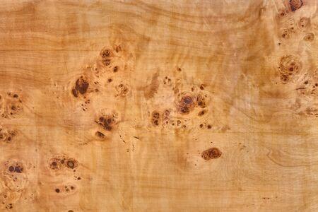 tavola di legno con impiallacciatura di radica di pioppo - radica di legno del fondo di struttura del nodo Archivio Fotografico