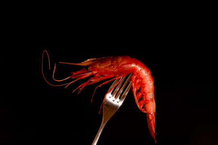 aphrodisiac: red fresh shrimp on a fork with black background Stock Photo