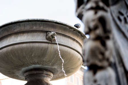 detail of the fountain in Piazza Santa Maria in Trastevere. Rome Italy