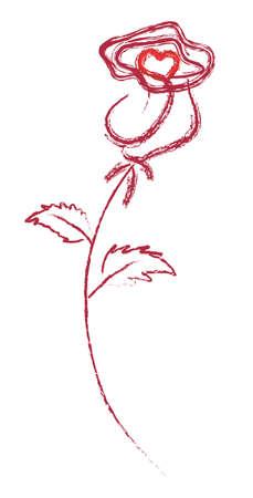 scarlet: rose