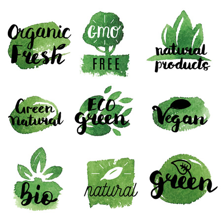 Different set of natural, organic, gluten free, fresh, locally grown and healthy products