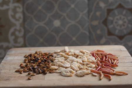 Traditional edible Mexican insects and shrimps on a table at kitchen Stock Photo