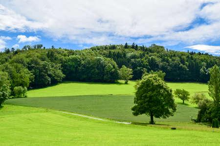 Countryside in Swizerland Stock Photo