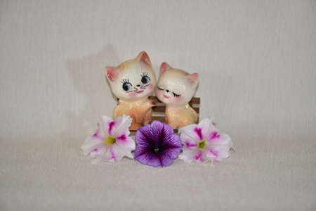 Kittens and flowers Banco de Imagens