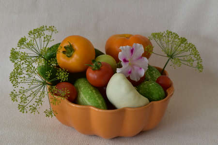 Vegetable composition. Variety of vegetables.