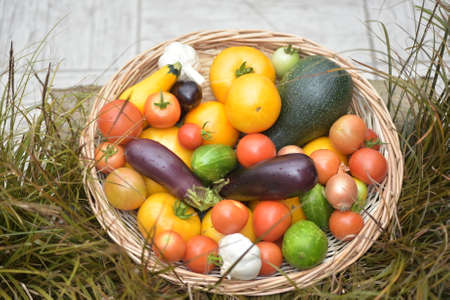 Basket of vegetables on the grass