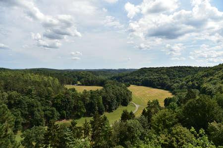 Woodland scenery Stock Photo