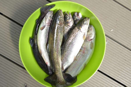 Fresh fish in a deep plate Stock Photo