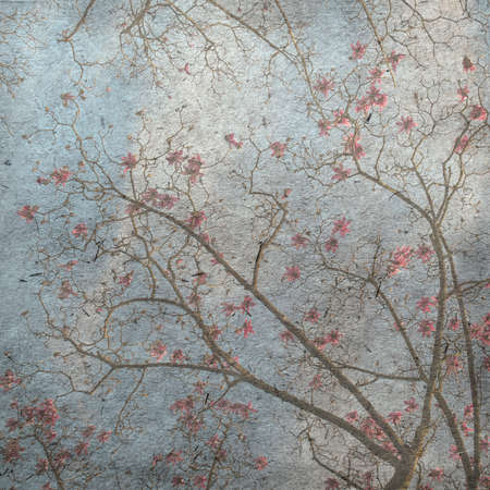 magnolia tree: vintage wallpaper background with spring magnolia tree flowers