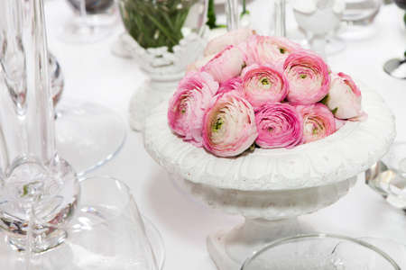persian buttercup: decoration of wedding table. pink ranunculus (persian buttercup) in vase on white table Stock Photo