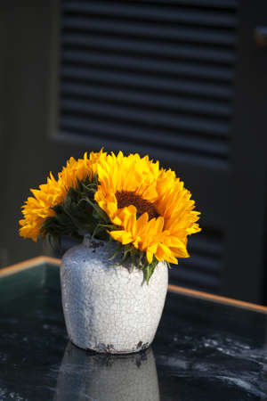 myrobalan: Bouquet of sunflowers in old ceramic jug against a white wooden wall.