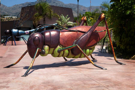natura: Benidorm-Jun 10, 2015: Entrance to Terra natura Benidorm Zoo. A giant statue of grasshopper at the entrance to the zoo.