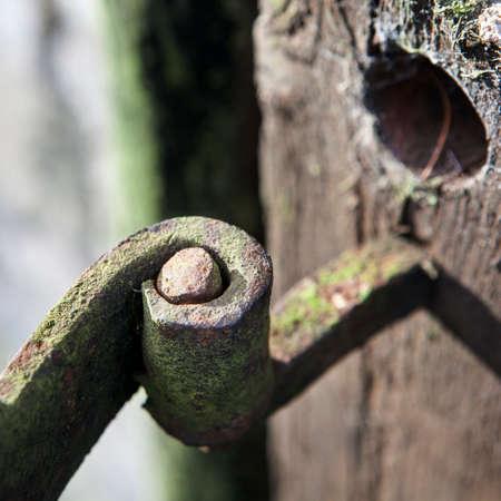 Black medieval door hinge on the wooden gate in England garden