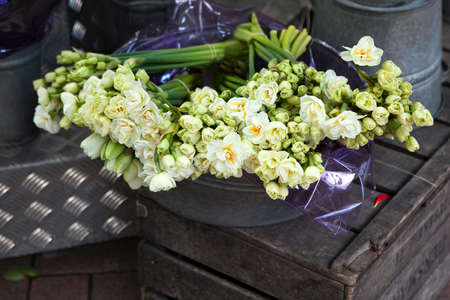 basins: white terry daffodils in the aluminum basins