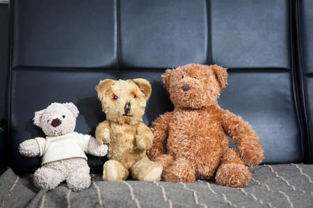 knick: old vintage teddy-bear sitting on sofa