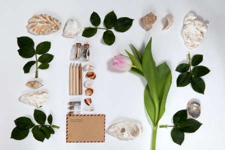 Frame from the leaves of roses and shells on white background. Memory of summer