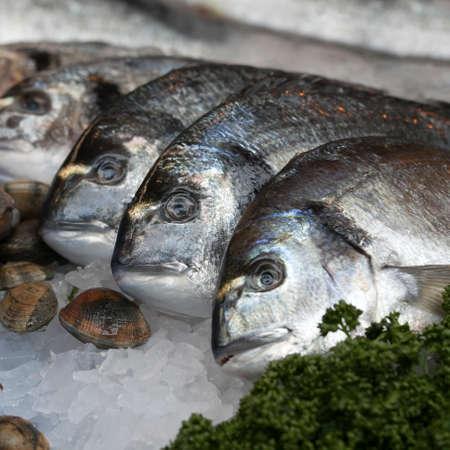 popular: Wild sea bass for sale at Borough Market, London