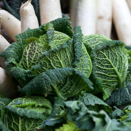 Savoy cabbage and turnips on the farm market