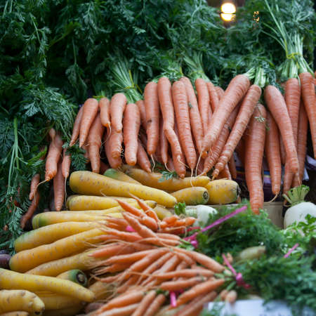 Yellow and orange bunches of carrots on the farm market Stock Photo