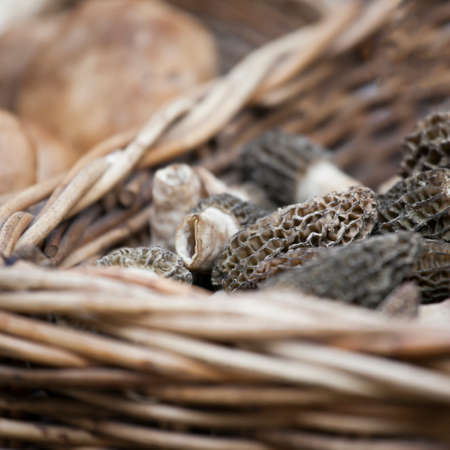 Dried Morels (Morchella vulgaris) at La Boquería market, Barcelona. Catalonia, Spain Stock Photo
