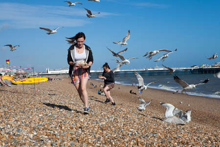 brighton: BRIGHTON, GREAT BRITAIN - MAR 01, 2017: Two girls with food run away from gulls who attack them on the beach