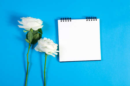A notebook on the springs with a white rose on a blue background with an empty space for notes.