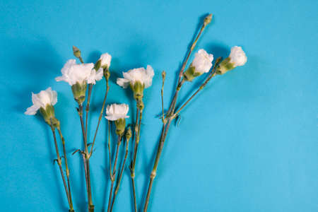 blte: A notebook on the springs with a white rose on a blue background with an empty space for notes.