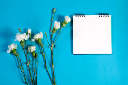 A notebook on the springs with a white carnation on a blue background with an empty space for notes.