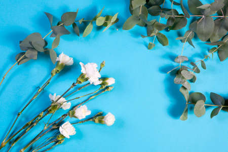 blte: four white carnation and eucalyptus on a blue background with an empty space for notes. Romantic card