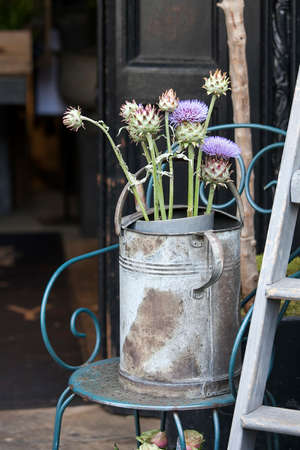 A bouquet of thistles in a galvanized bucket stands on a chair near the entrance to the store.