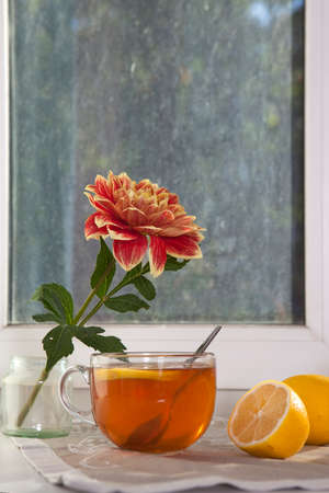Automne nature morte avec des dahlias d'oranger dans un pot en fer blanc, une tasse de thé et sur la fenêtre par temps ensoleillé Banque d'images - 86793170
