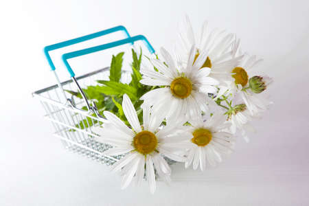 wire frame: the Shopping basket with daisy isolated on white background