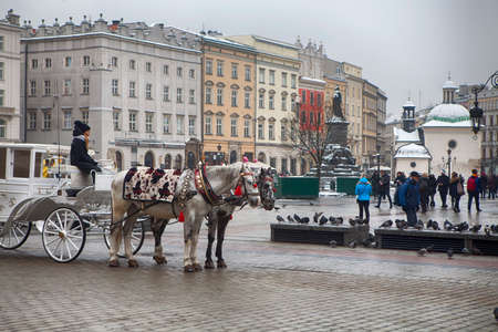 Krakow, Poland - February 12, 2018 Horse in front of st Mary cathedral in Krakow, Poland