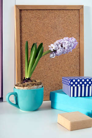 Pale hyacinth in a blue cup on the background of a cork board for writing