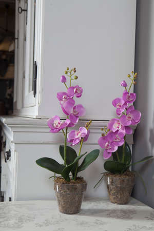 Artificial Orchids In A Glass Vase In The Interior Stock Photo