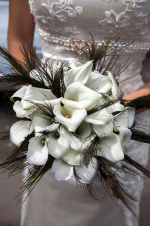 Wedding bouquet from white callas and peacock feathers Stock Photo