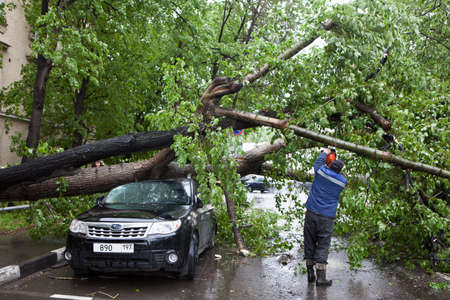 MOSCOW, RUSSIA - 26 June, 2017: Hurricane in Moscow knocked down trees. tree fell on an expensive car. Hurricane in Moscow knocked down trees. tree fell on an expensive car. Editorial