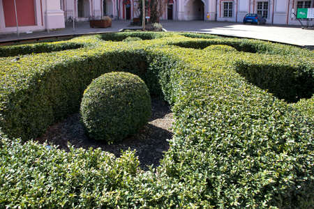 the decoration in the form of a cross and balls in it from boxwood in the courtyard of the church Stock Photo