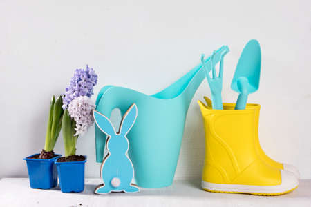 Yellow rubber boots and blue watering can with a bouquet of flowers of white and pink tulips on the white background. Garden accessories.
