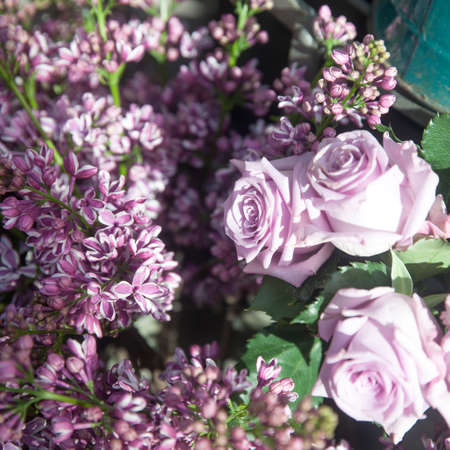 The branches of lilac for sale in the store