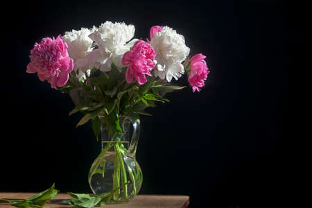 A bouquet of white and red peonies in a transparent vase on a dark background 스톡 콘텐츠