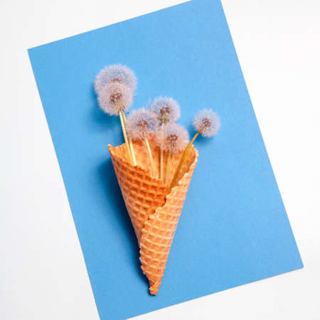 Bouquet of dandelions in a waffle cup on a blue background