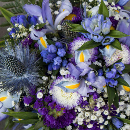 Bridal bouquet of Eryngium planum Blue Sea Holly with Gypsophila and iris