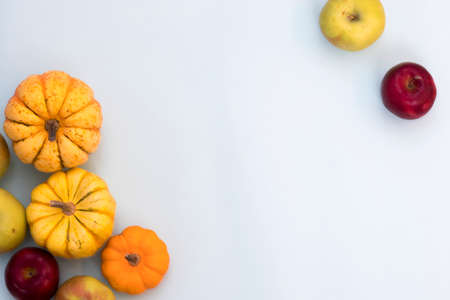 Orange pumpkins, top view on the blue background , web banner with copy space 写真素材
