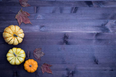 Orange pumpkins and leaves, top view on the brown wooden background , web banner with copy space 写真素材