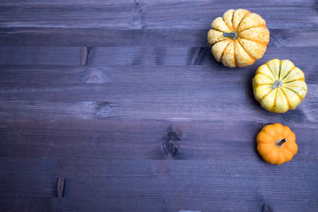 Orange pumpkins , top view on the brown wooden background , web banner with copy space