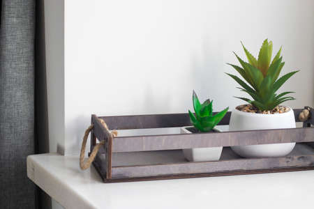 Artificial succulents in ceramic pots in a wooden box on the window as an interior decoration. Copy space Stock Photo