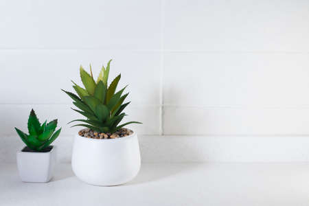 Artificial succulents in ceramic pots in the kitchen as an interior decoration. Copy space